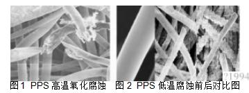 1  PPS 高温氧化腐蚀  图2  PPS 低温腐蚀前后对比图